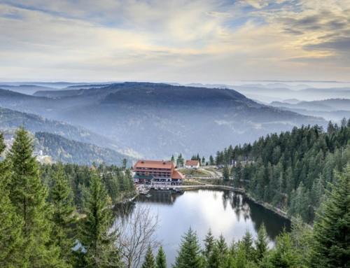 Der professionelle Hotelmakler – im Schwarzwald zu Hause, in Deutschland erfolgreich