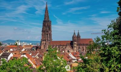 Immobilienmakler aus Freiburg