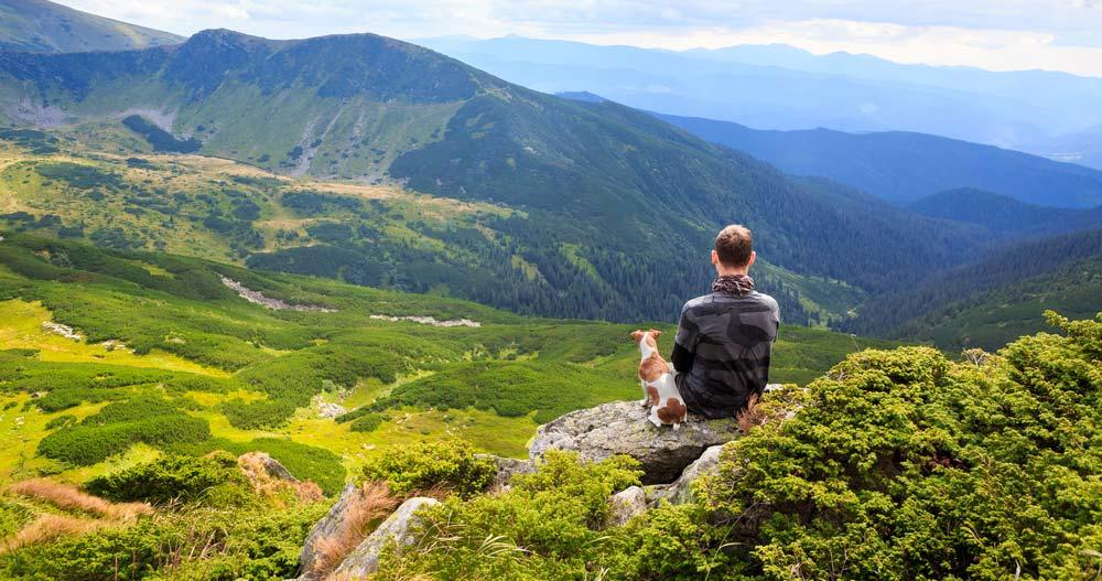 Urlaub im Schwarzwald mit Hund